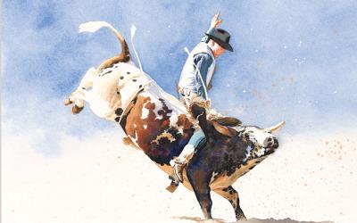 Bull Rider 01