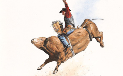 Bull Rider 02
